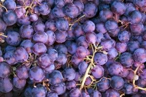 Фото 6 - Сок натуральный виноградный без воды и сахара.Возможна доставка.