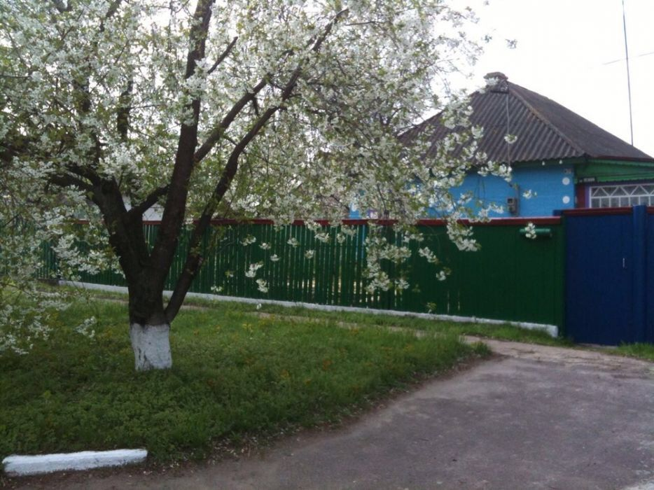 Фото - Продам дом в с. Новоукраинка