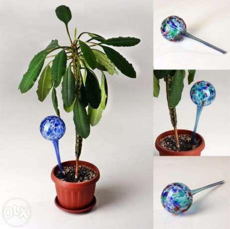Фото 2 - Шар для полива растений Аква глоб 2шт. Колбы для полива растений