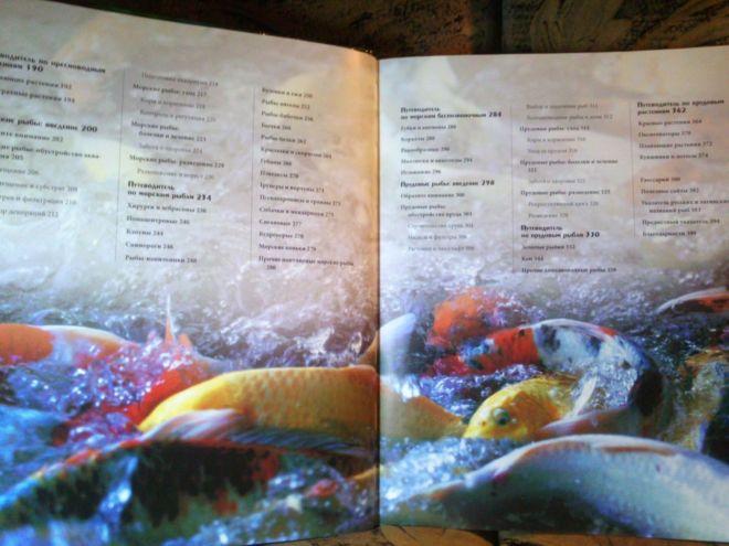 Фото 4 - Энциклопедия аквариумных и прудовых рыбок