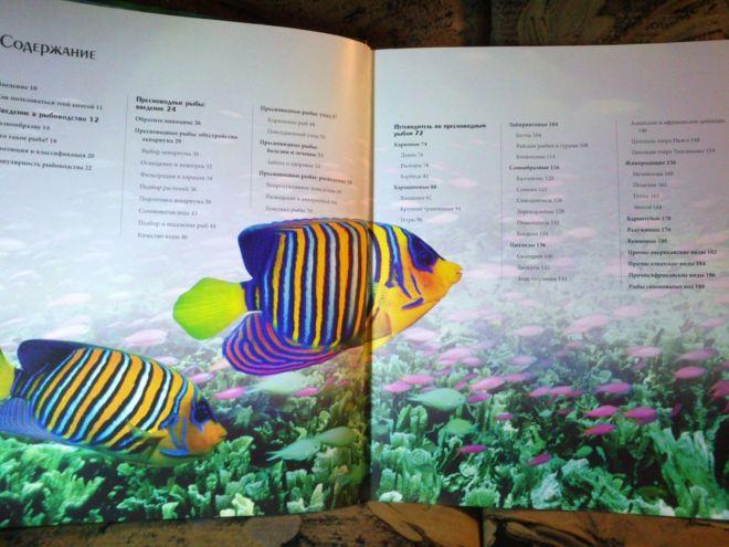 Фото 3 - Энциклопедия аквариумных и прудовых рыбок