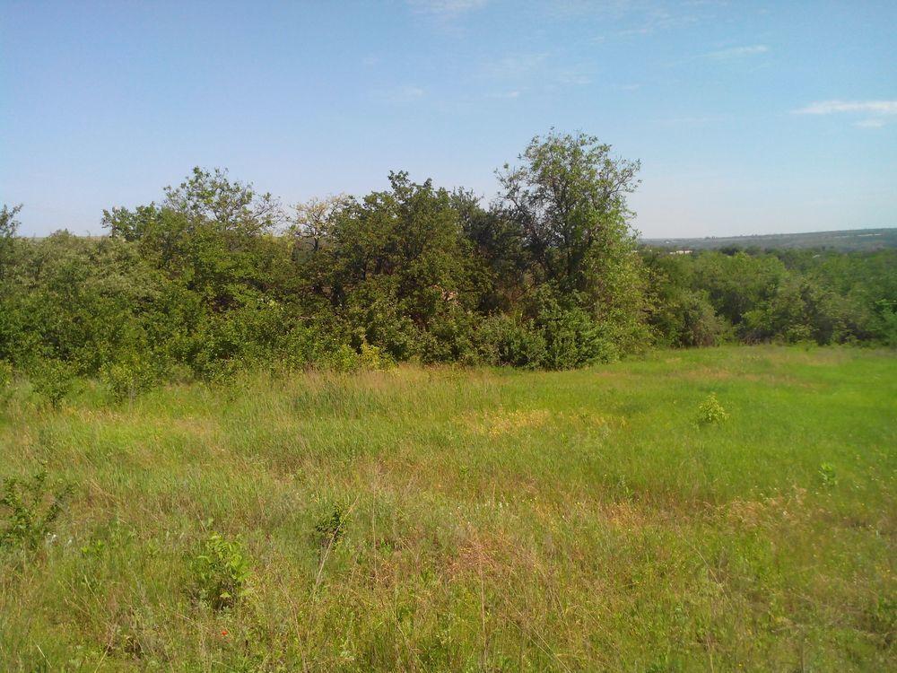 Фото 2 - Земельный участок с домом в с. Волосское