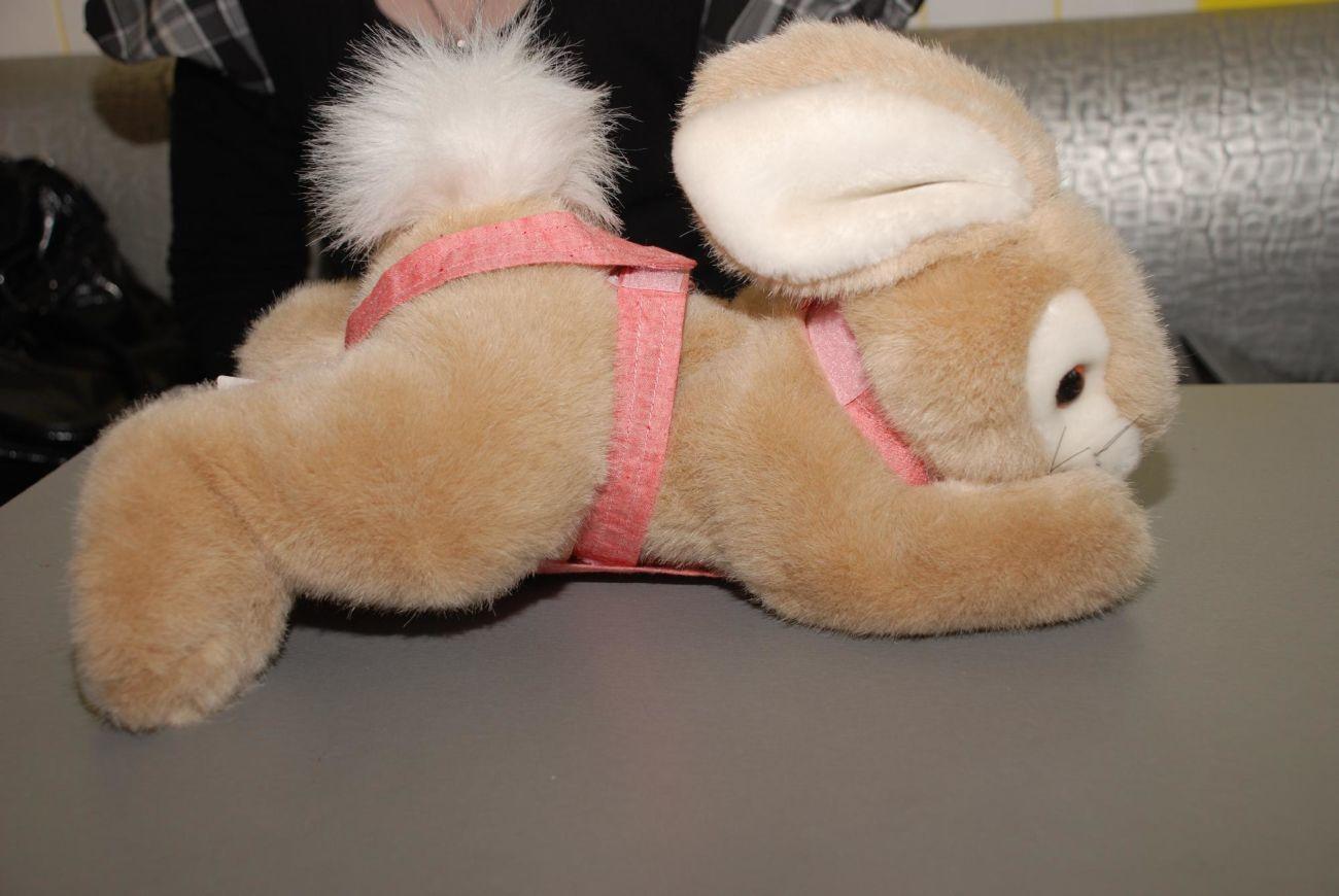 Подгузники для кроликов своими руками 61