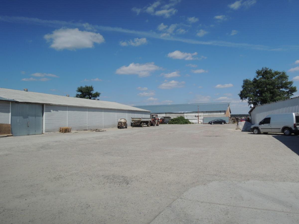 Фото 4 - Гореничи. Продажа складов 4285 кв. м. Без комиссии.