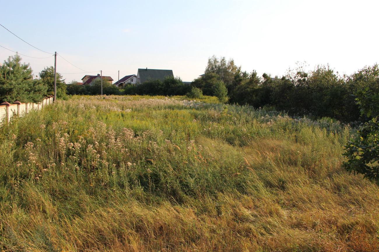 Фото 2 - Продам земельный участок 53 сотки с.Крячки, Васильков, 25 км от Киева