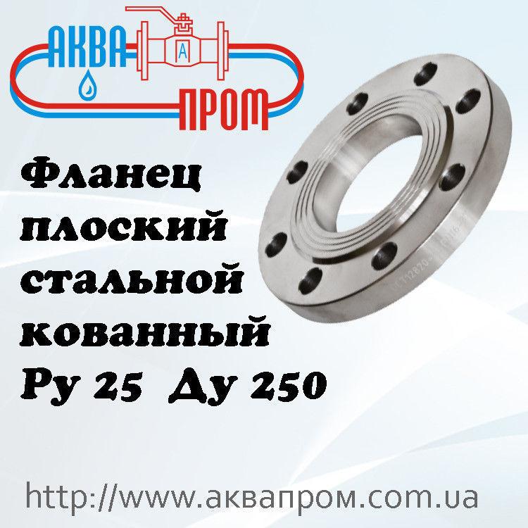 Фланец плоский стальной кованный Ру 25 Ду 250