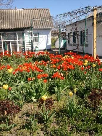 Фото - Продам дом на Восточном ул. Севастопольская