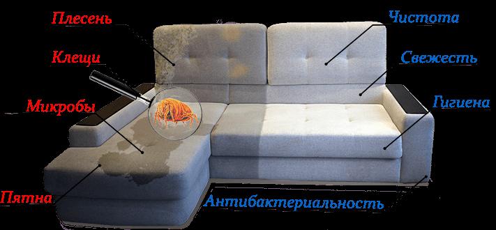 Чистка-Химчистка мягкой мебели,ковров,ортопедических матрасов.