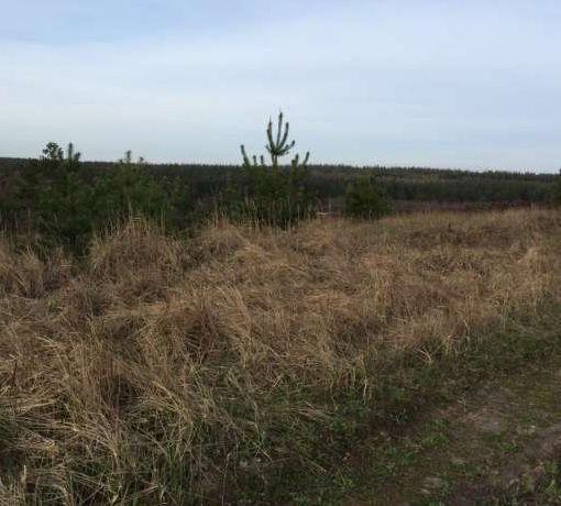 Продам участок  возле леса в с Тарасовка