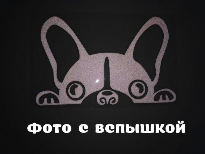 Наклейка на авто Собачка светоотражающая Тюнинг авто 3