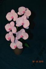 Орхидея из фоамирана. Ручная работа
