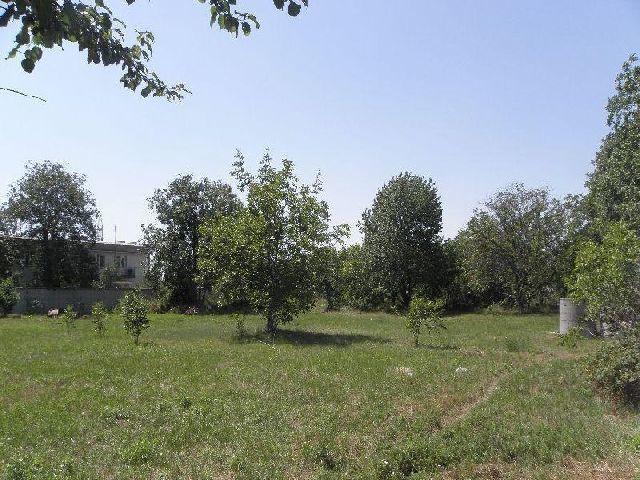 Фото 3 - Производственно-складской комплекс 4272кв.м  возле г.Ильичевск