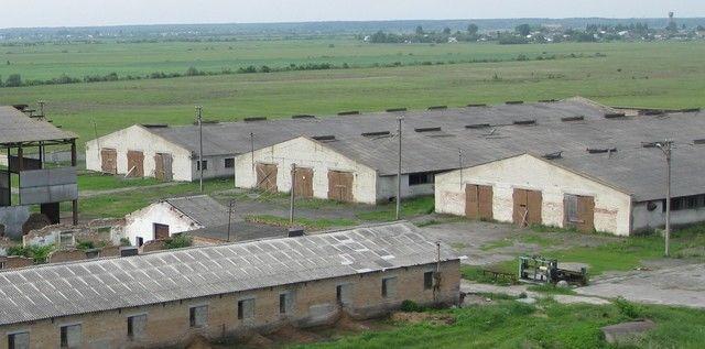 Продается животноводческий комплекс в Ровенская обл.