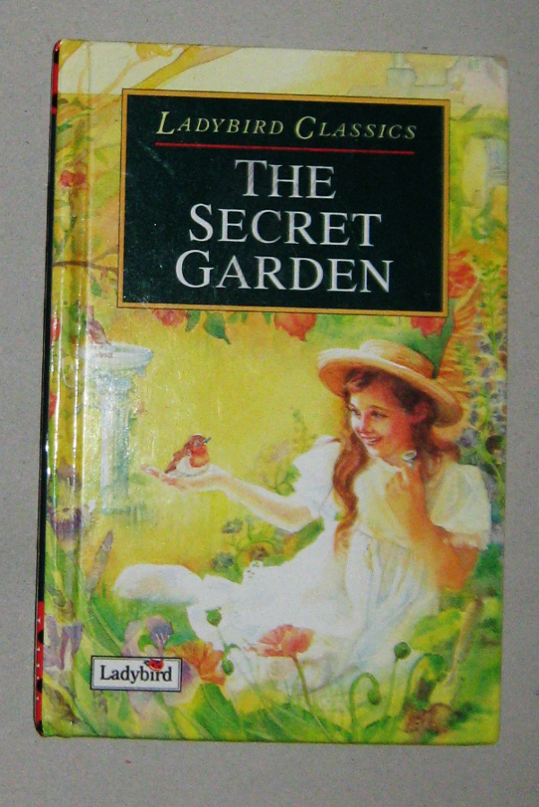the journey of mary in the secret garden a novel by frances hodgson burnett The secret garden by frances hodgson burnett genre  in the manor mary hears of a secret garden which has been locked up and not visited in ten years.