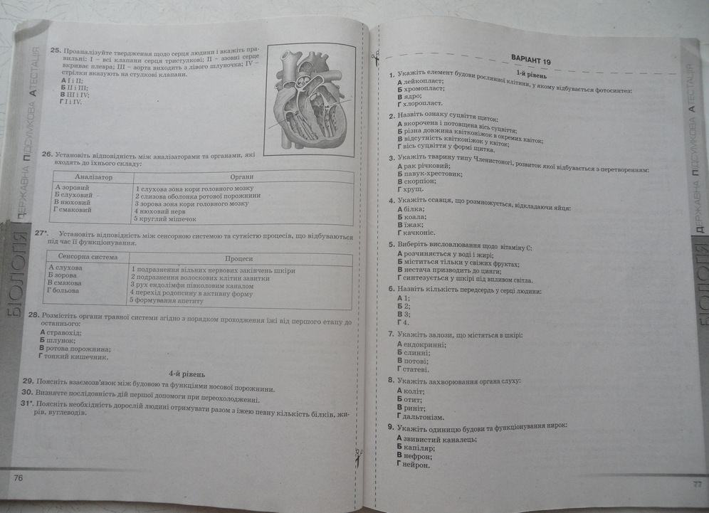 Гдз 11 Клас Фізика Збірник Задач