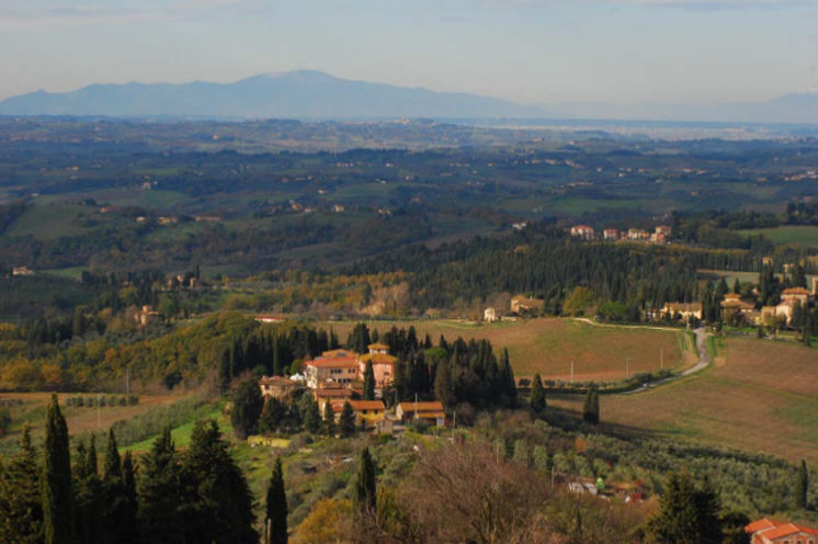 В Италии возле Флоренции вилла с фермой по производству масла.