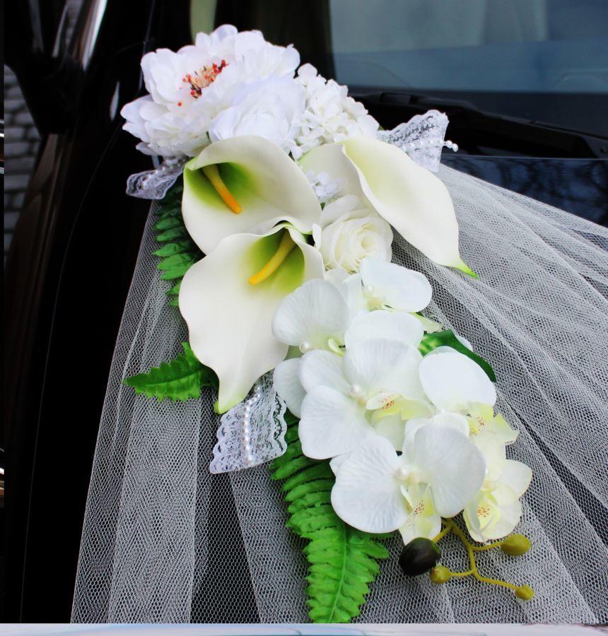 Купить цветы из польше машину, для первоклассника сентября