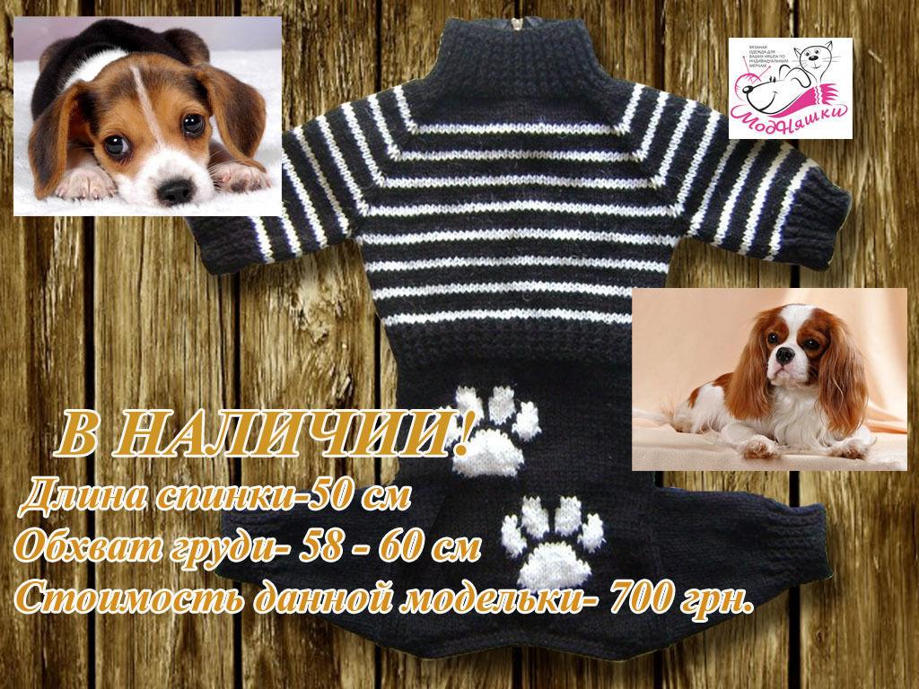 Вязаная одежда для животных