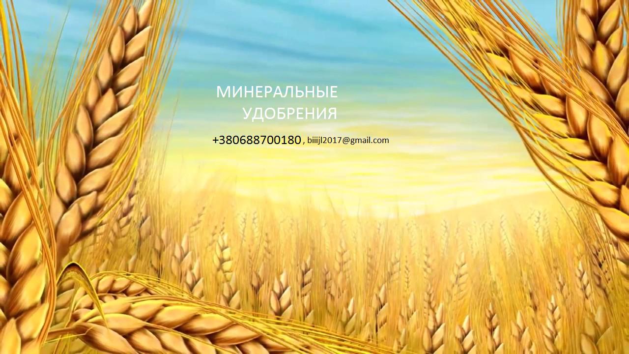 Минеральные удобрения вагонными, машинными нормами по Украине, экспорт