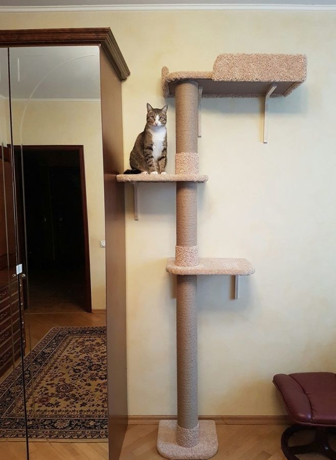 Когтеточка домик для кота своими руками размеры фото 67