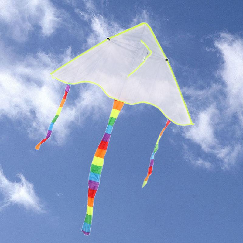 Воздушный дельта - змей.