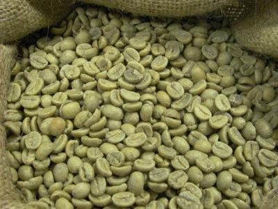 Зеленый кофе Arabica Plantation India