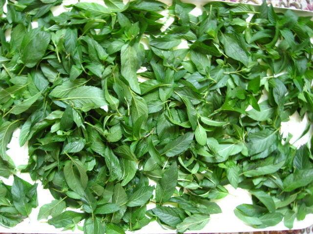 Кукурузные рыльца, мята перечная ментол -- трава на чай