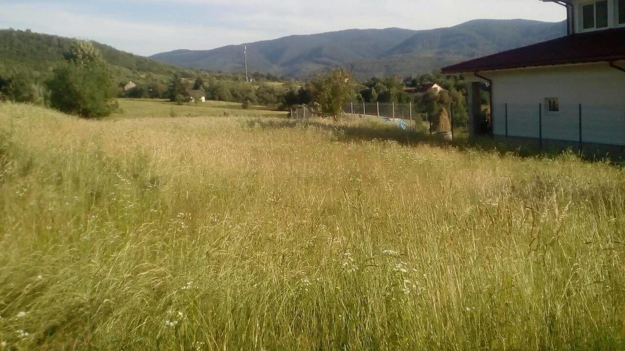 село голубиное закарпатье фото георгиевский