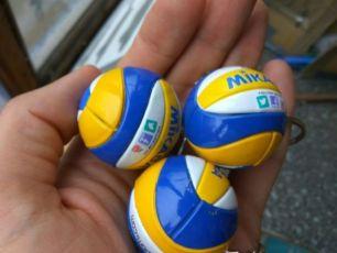 Волейбольный мяч Mikasa VSL 300/MVA 200 брелок