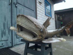 Чучело Акулы