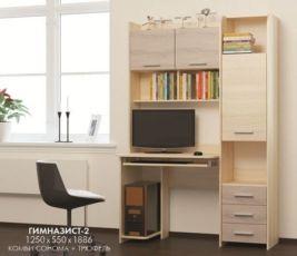Компьютерный стол Гимназист-2, ДОСТАВКА ПО ГОРОДУ