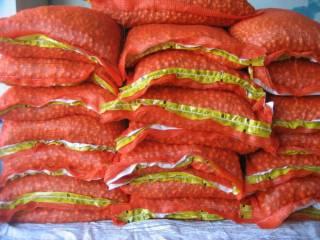 Лук Голландский озимый севок- 16 лучших сортов-оригинал опт от 10 кг. 7