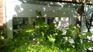 Меняю дом в Старом Салтове на квартиру в Харькове