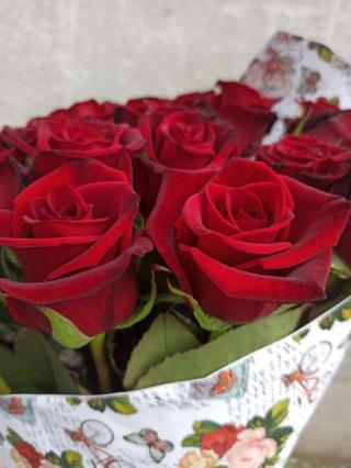 Роза домашняя. Ежедневный срез! Цветы от производителя. ЦЕНА-КАЧЕСТВО! 6