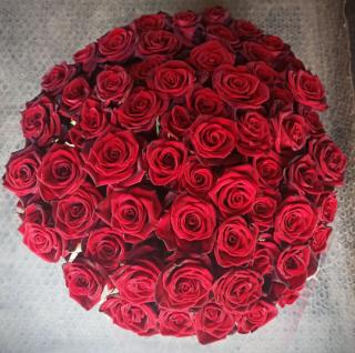 Роза домашняя. Ежедневный срез! Цветы от производителя. ЦЕНА-КАЧЕСТВО! 5