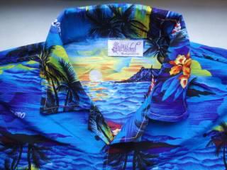 рубашка  Гавайская Wicked Costumes (S) 3