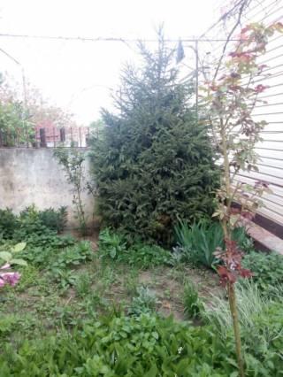 Продам свой дом в Александровке по ул Виноградной 7