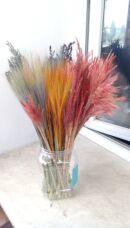 Лен Декор травы Гелехристум 8