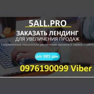 Создание сайта, лендинг для бизнеса, домен и хостинг для сайта