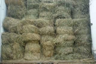 Продам сено Люцерня Разнотравье Луговое по 35гр за тюк второй укос 20г