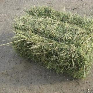 Продам сено Люцерня Разнотравье Луговое по 35гр за тюк второй укос 20г 2