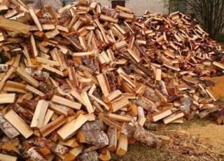 Продаём дрова 1,200грн колитие берёза, мокрая акацыя рубаные 5