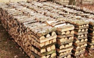 Продаём дрова 1,200грн колитие берёза, мокрая акацыя рубаные 4
