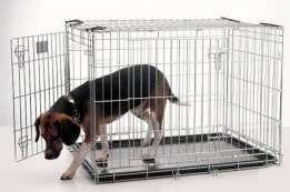 Джек Рассел терьер клетка вольер для щенка кота собаки