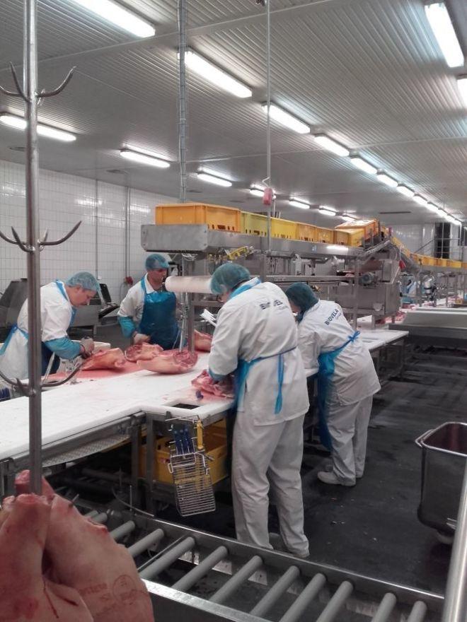 Обвальщики мяса(Литва) - официальное трудоустройство!