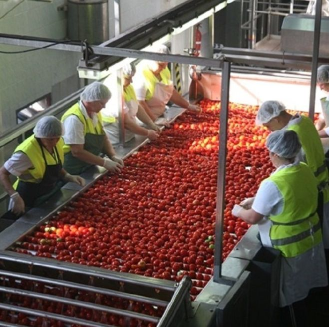 Вакансія сортування овочів та фруктів