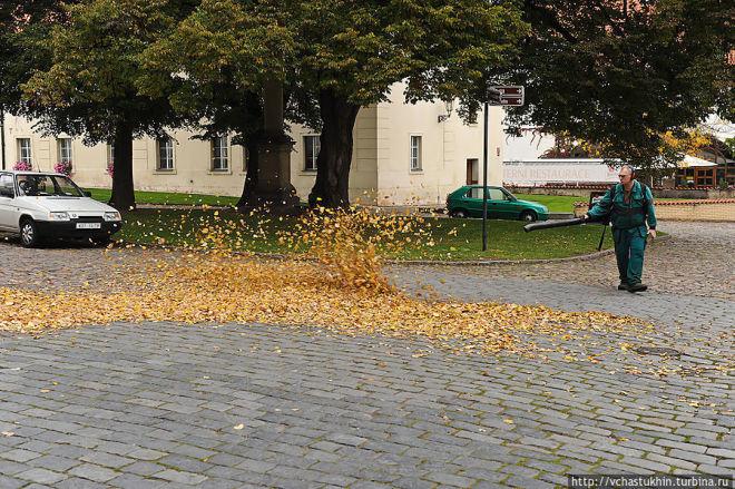 Работа в Чехии. Уборщики улиц и помещений. GoWork