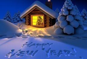 Тур в Карпаты Новый год, Закарпатье на Новый год из Киева,Буковель тур
