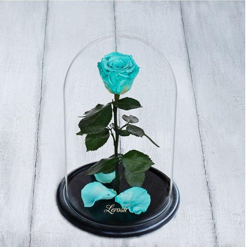 Стабилизированная роза в колбе Lerosh - Standart 33 см, Бирюзовая