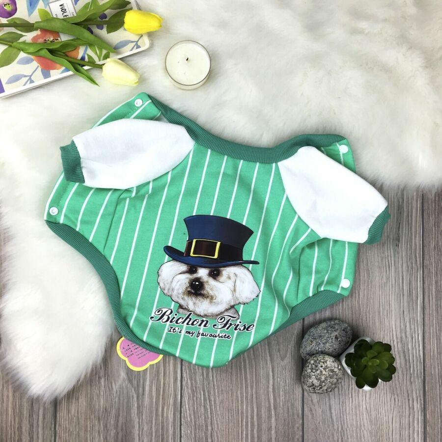 Бомбер для собак Dog Baby Bichon Frise